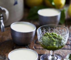Lemon Pannacotta on a sweet basil pesto