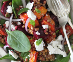 Warm Salad of Lentils, Butternut, Baby Beetroot and Goat's Cheese with Harissa Dressing