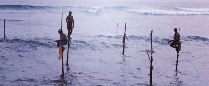 web_fishing_Sri Lanka