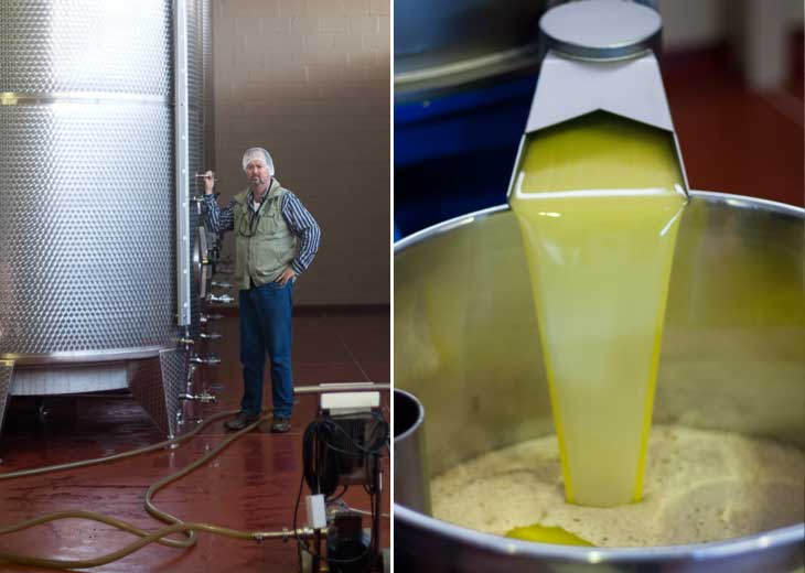 Wandering Willow Creek Olive Oil Estate