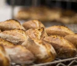 Wholewheat_Bread_recipe_300x480