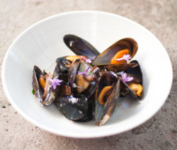 Black-Mussels-Tea-400x600