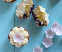 Blueberry_Cupcake_400x600