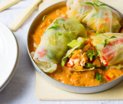 Stir-Fried-Veggie-&-Chicken-Cabbage-Parcels_400x600