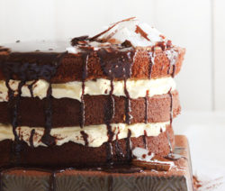 Chocolate-Drizzle-Lamington-Cake-with-White-Chocolate-&-Vanilla_400x600