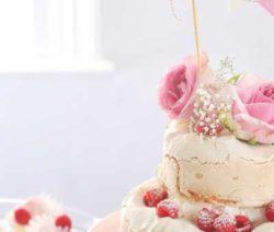 pavlova_cake_400x600