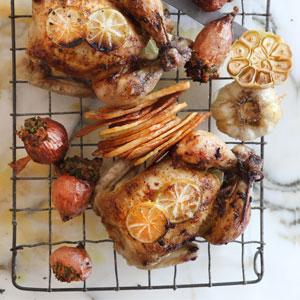 Roast Baby Chicken
