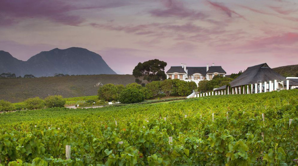 Bouchard Finlayson Releases New Vintages