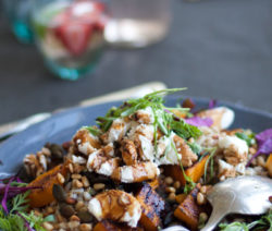 Butternut-and-Barley-Salad-4x6