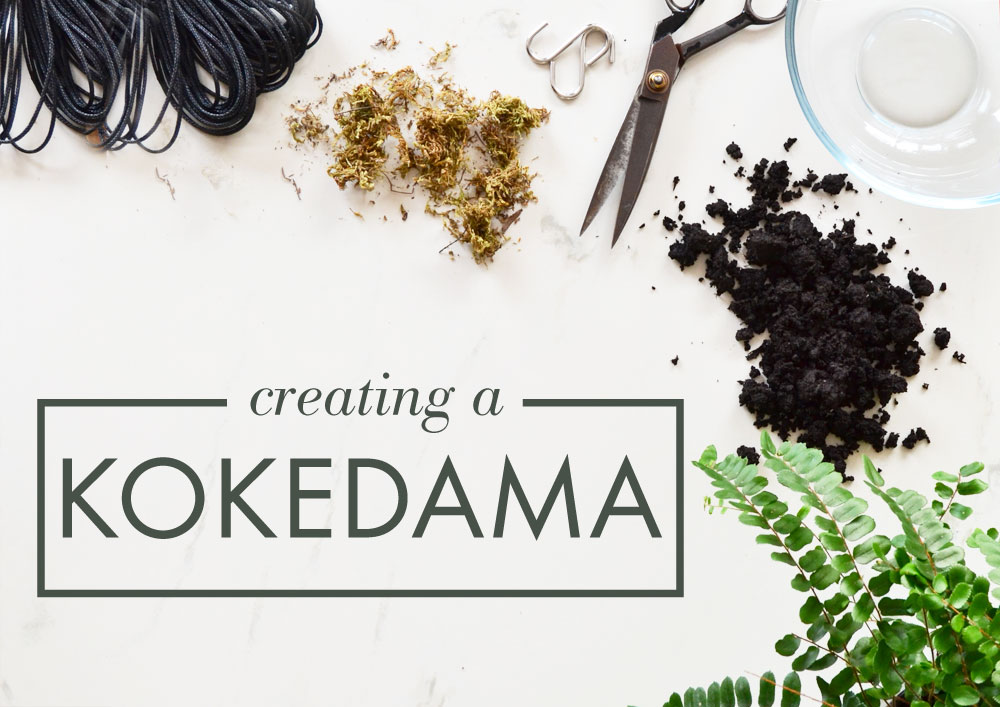 DIY How to make a Kokedama