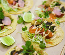 Santa Anna Refried Black Bean Taco Recipe