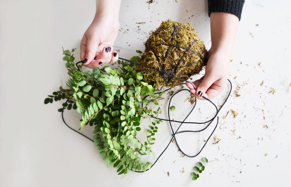 DIY How to make a Kokedama