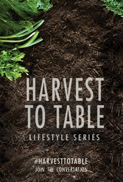 harvest-to-table
