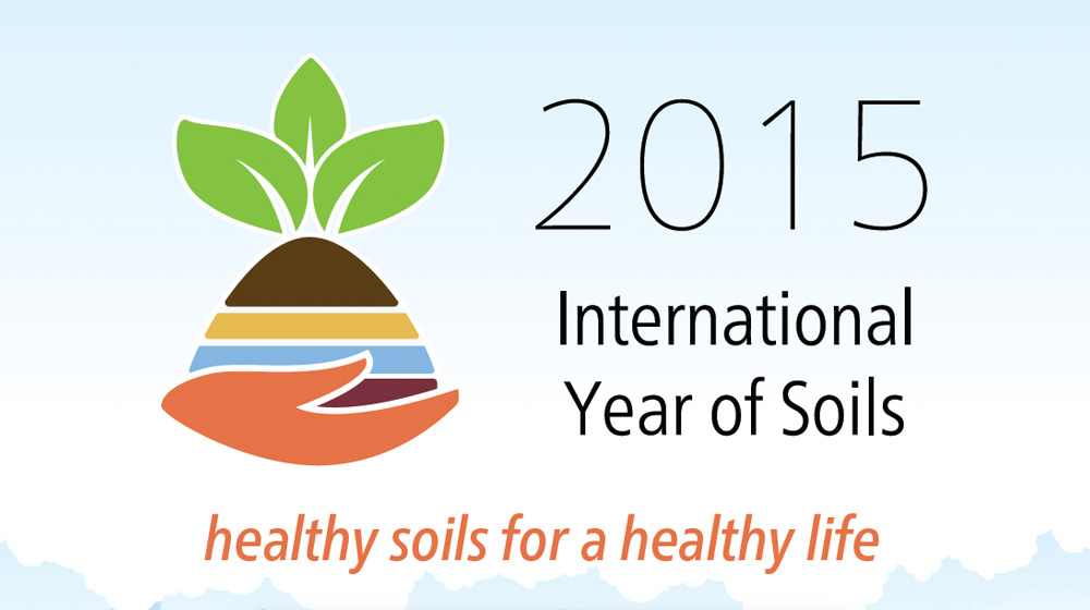 Year of the Soil