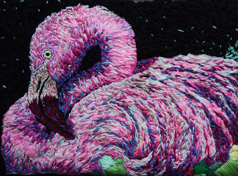 flamingo-full-danielle clough