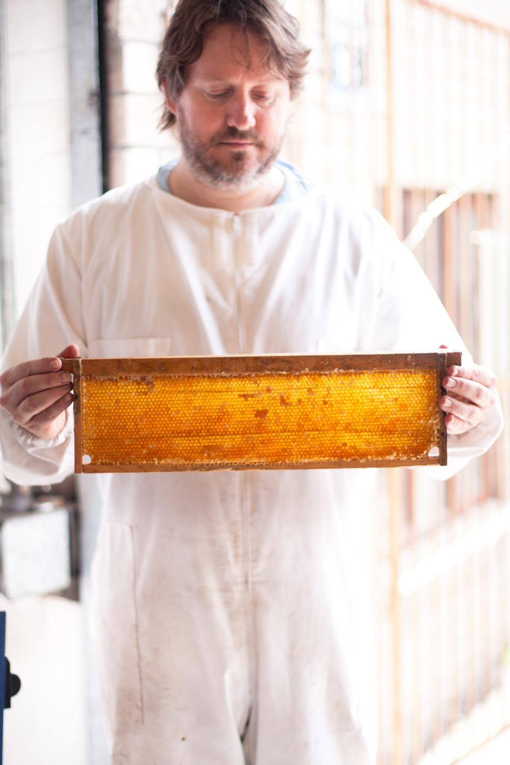 urban Beekeeping Gardeners Glory Honey
