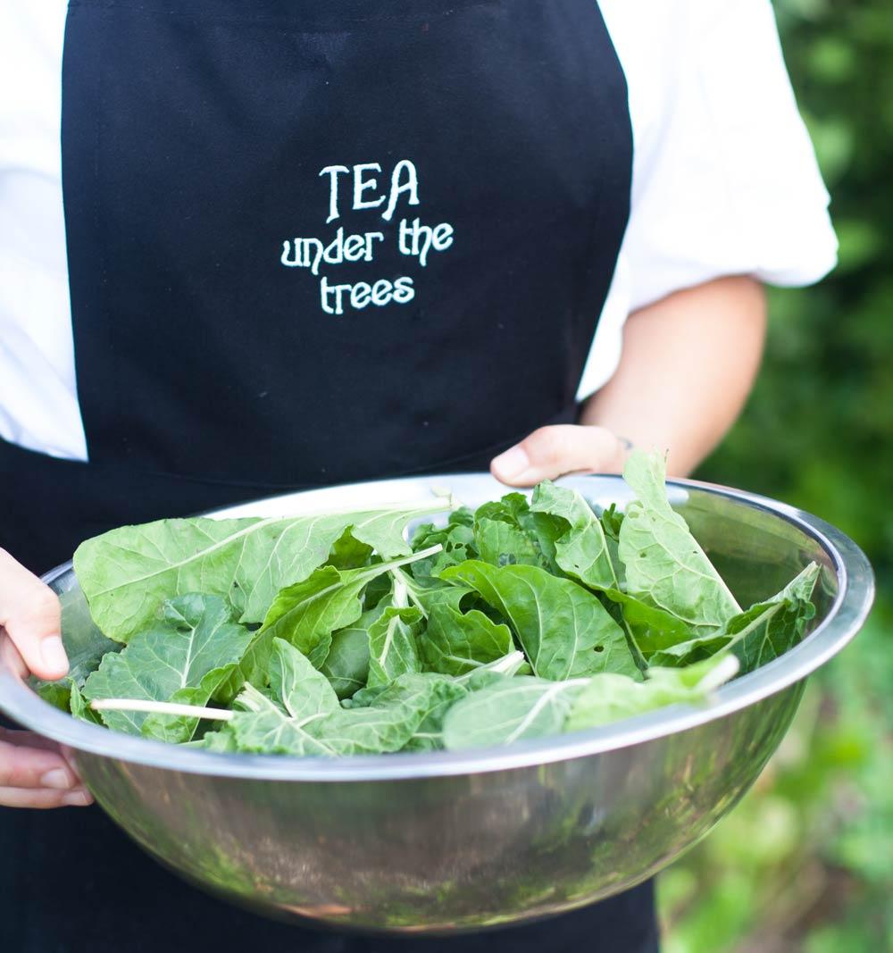 Tea-under-the-trees