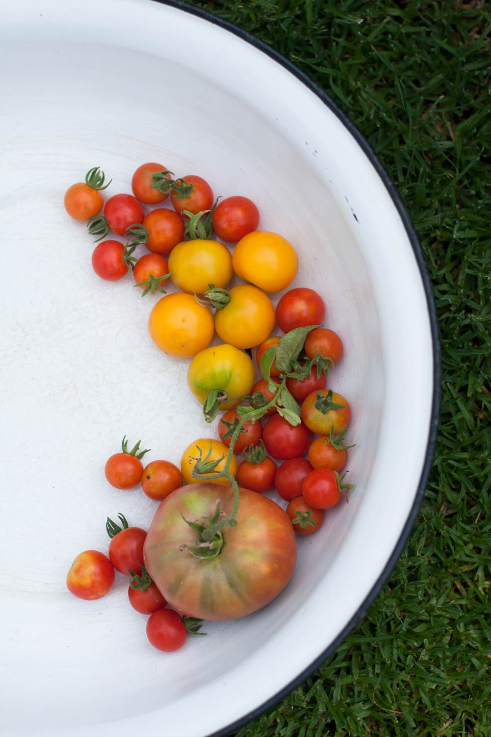 Tomatoes-Table-at-De-Meye