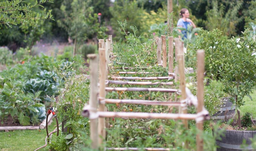 The garden at Table at De Meye