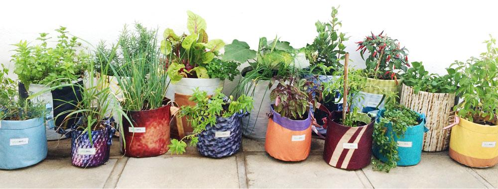 growbag-planters