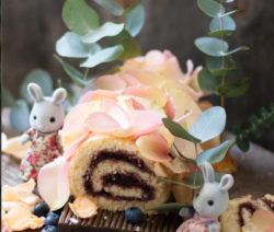 Forest-Berry-Swiss-Roll