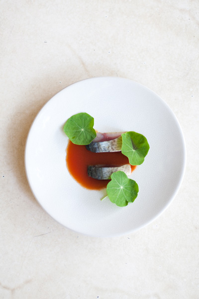 Pickled Mackerel with Bloody Mary Sauce, Nasturtiums & Toast recipe