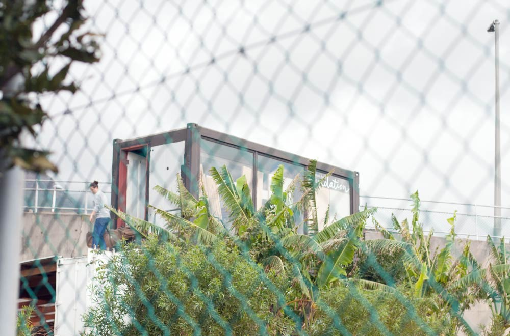 Greenpop Nursery
