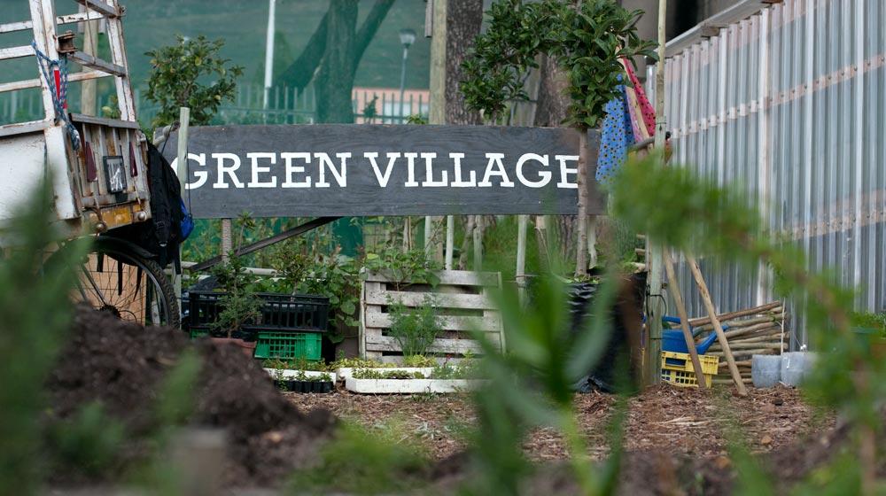 Green pop Nursery
