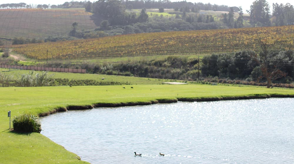 Webersberg Wine Estate