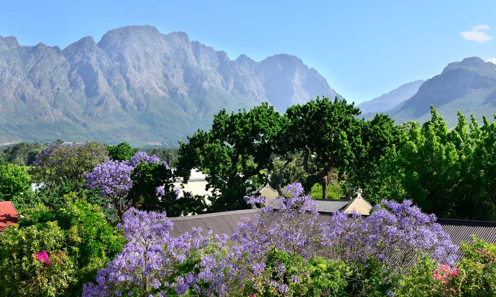 FRanschhoek-Boutique-Hotel-outdoors
