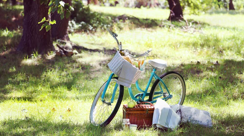picnic-spots