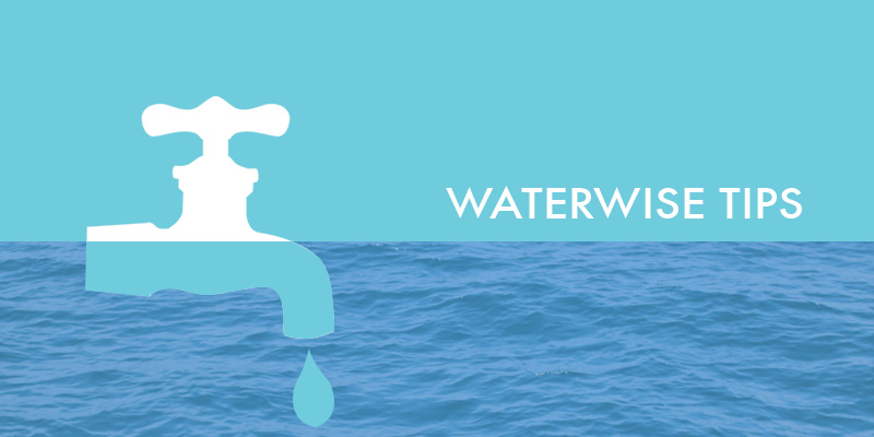 waterwise-tips