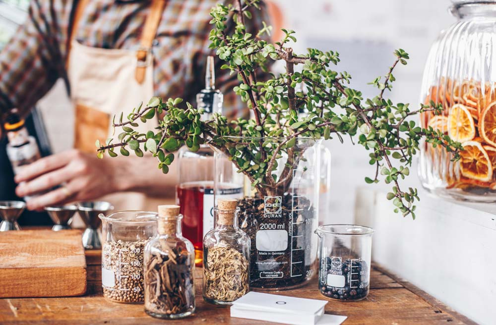 The Gin and Tonic Festival south africa