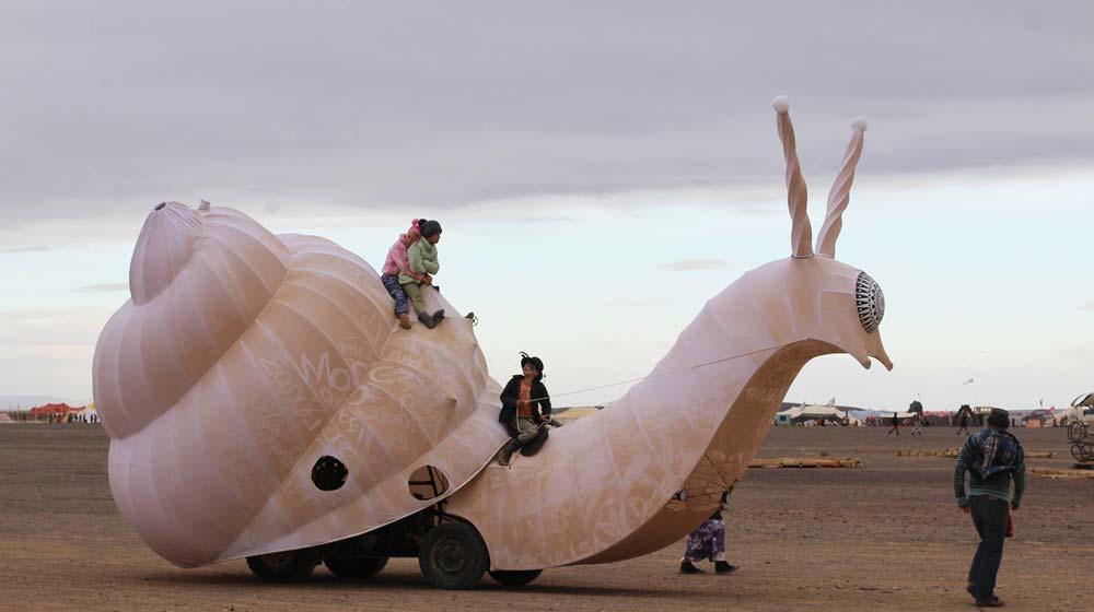 Snail-Afrikaburn