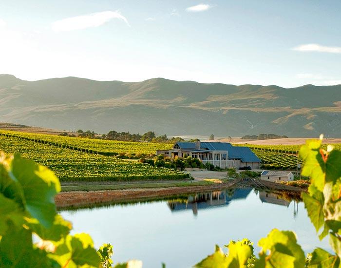 Creation Wine Estate