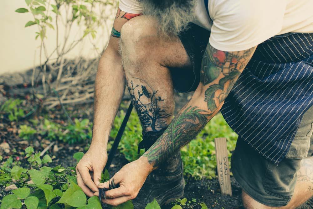 hefs_tattoos_foliage--Chris-Erasmus