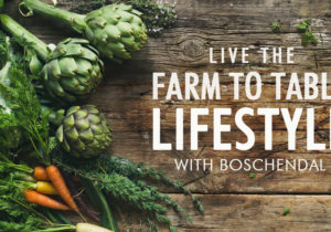 Farm to table cooking with boschendal