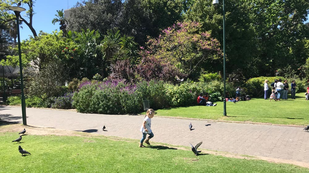 Company-Gardens | -Beautiful-Picnic-Spots-in-Cape-Town