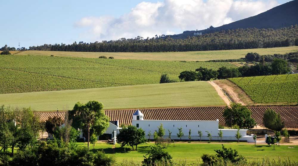 wine farms close