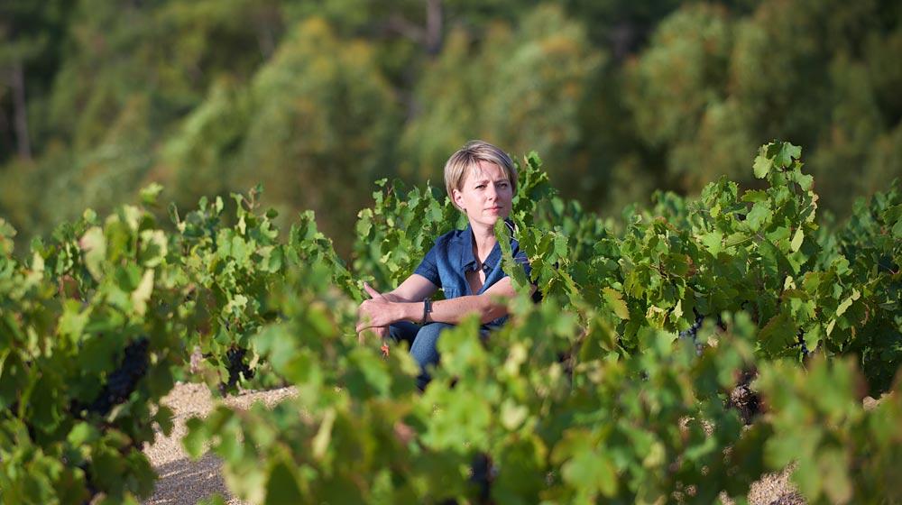 Bosman wines - Corlea Fourie