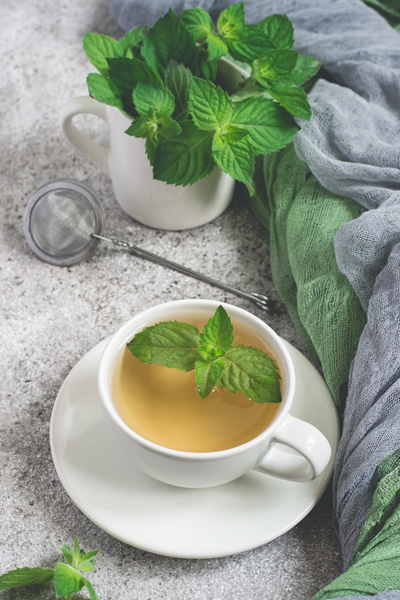 Fresh Mint leaf Tea