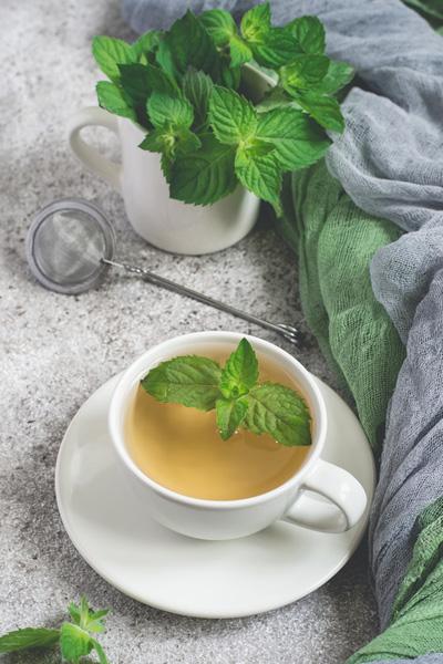 Fresh Mint leaf Tea