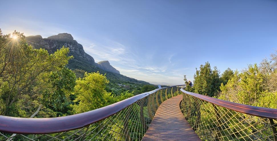 Kirstenbosch-Botanical-Gardens | Beautiful-Picnic-Spots-in-Cape-Town