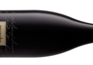 Reyneke-Bio-Dynamic-Syrah-Bottle-1x5