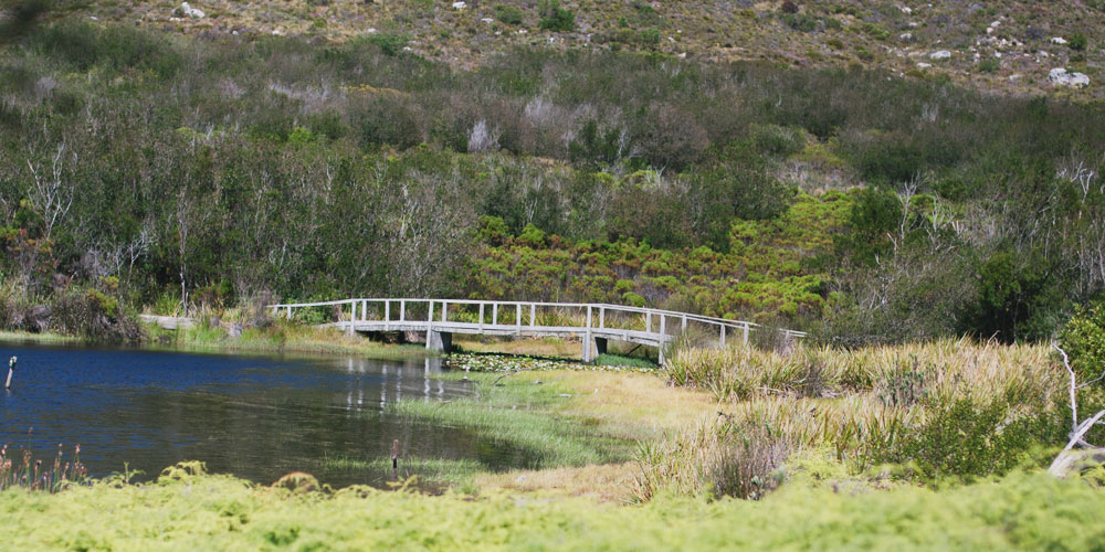 Silvermine nature reserve - Beautiful picnic spots in cape town