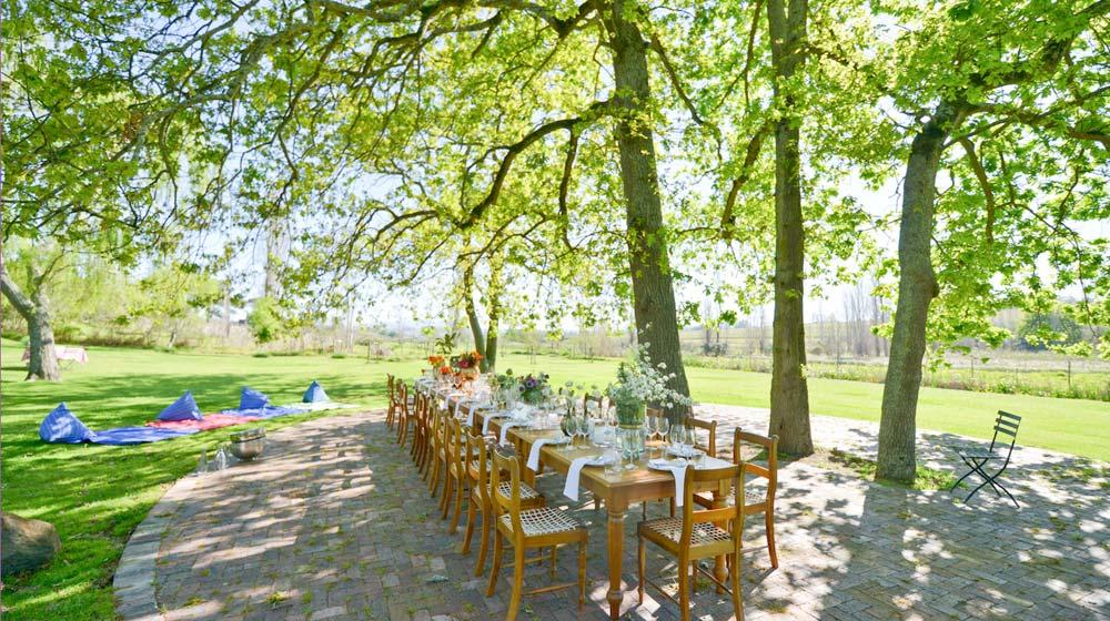 wine farm picnics - hartenberg