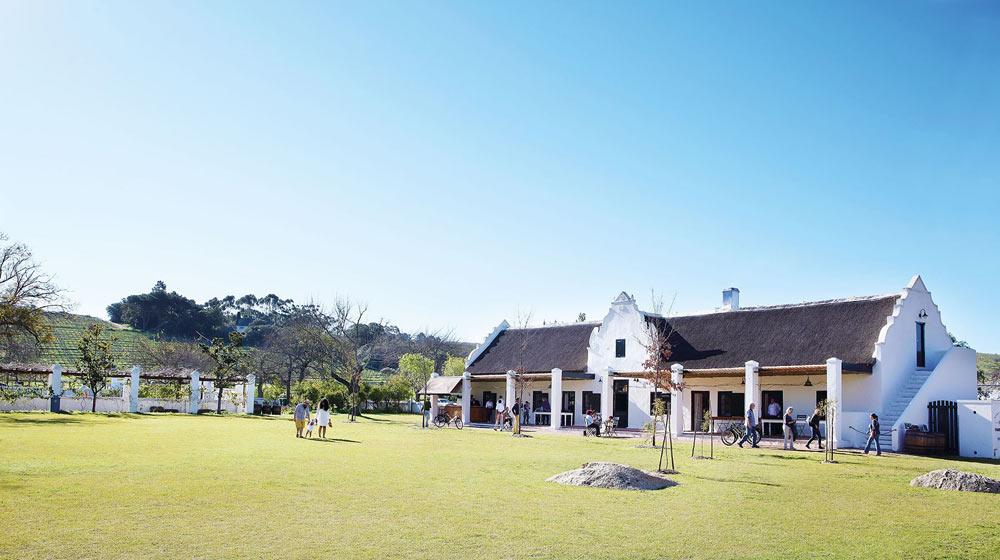 Spier-wine farm picnics