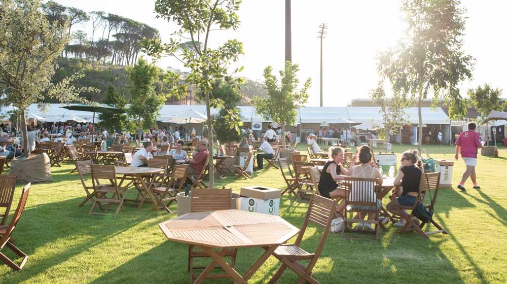Stellenbosch Wine Festival 2018