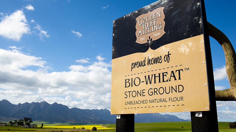 Bio-Wheat Flour