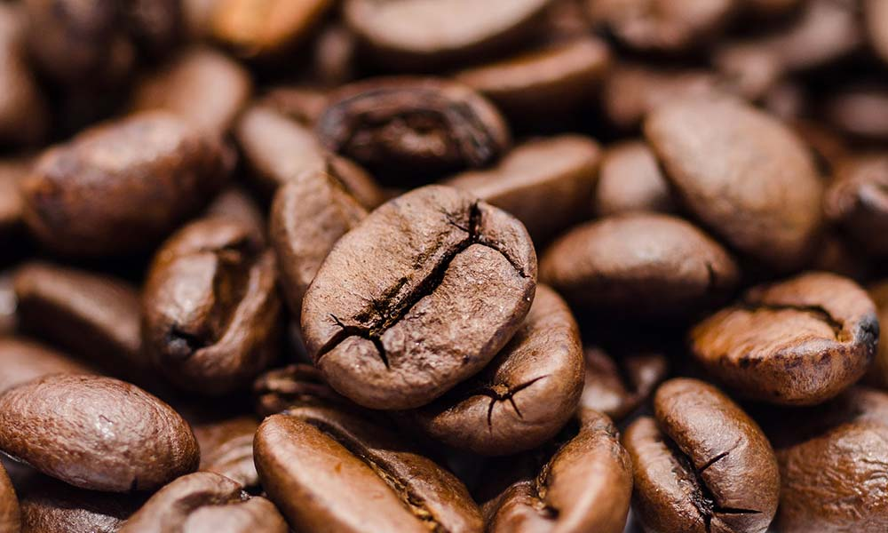 Everything you need to know about coffee